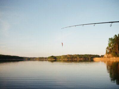 Fiskekalender og fiskesæson