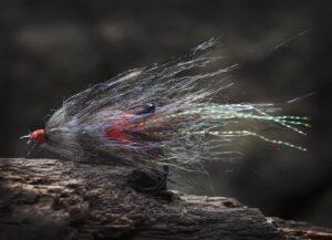 Kystflue - vaskebjørn epo